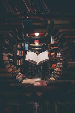 Si solo pudieras leer un libro por el resto de tu vida, ¿Cuál sería y por qué?